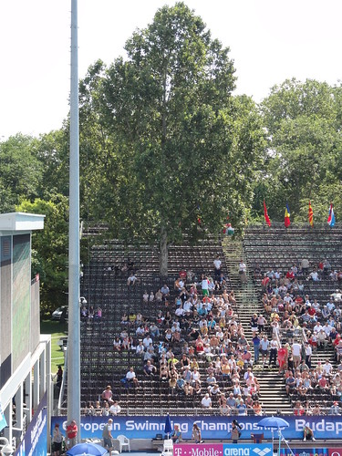 A tree up through the Budapest 2010 spectator stands | by morshus