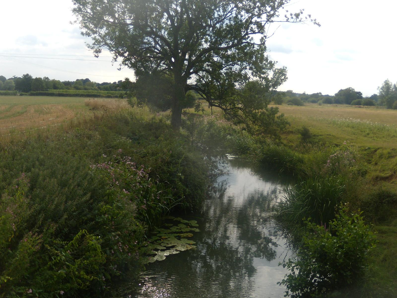 Stream Robertsbridge circular