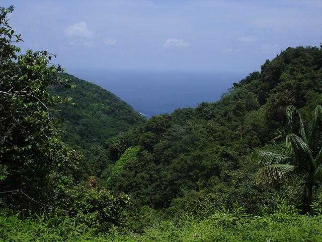 Vista sobre bahía Iglesias