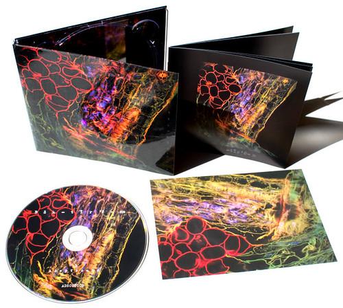"Images for ""Bacterium"" album (Adeptsound, Australia) | by Fernan Federici"