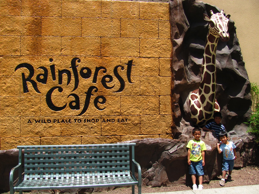 Rainforest cafe ontario mills