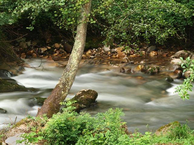 Rio Cubia, tras la tormenta la calma..