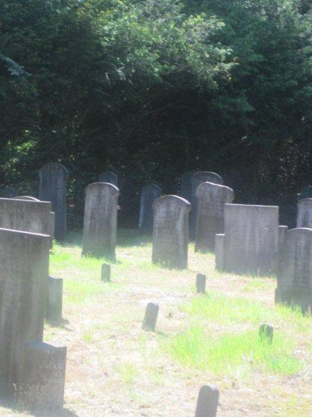 Dutch cemetery 2010 - Photos by Caroline Nelissen