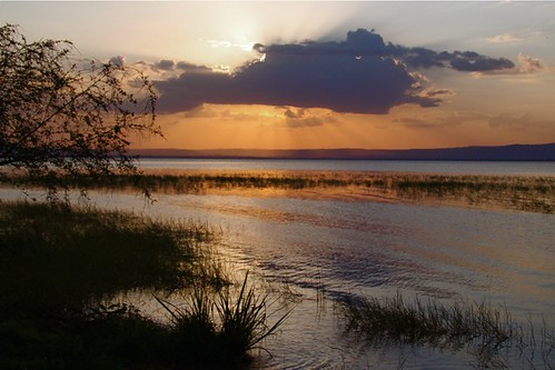sunset cloud sun lake nature beautiful lac ethiopia alam matahari danau hayk awasa sekitar awah terbenam