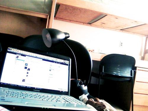college campus bedroom girly laptop messy desklamp comfy
