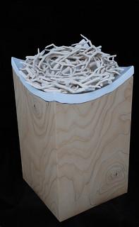 nest 1 | by asha.robertson