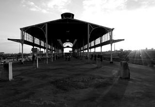 Old Park Halt Station | by Reej