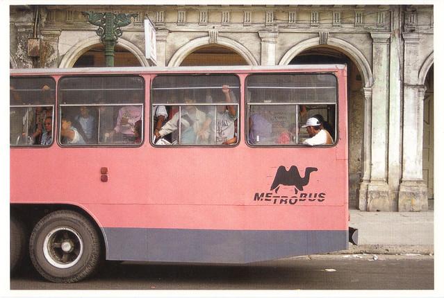 Pink Metro Bus Postcard