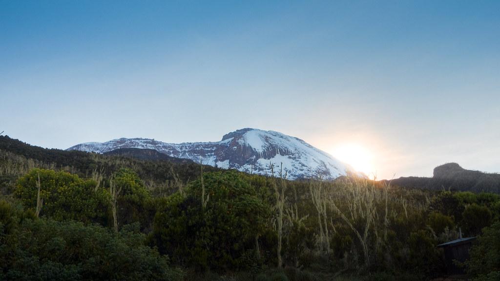 Kilimanjaro 019