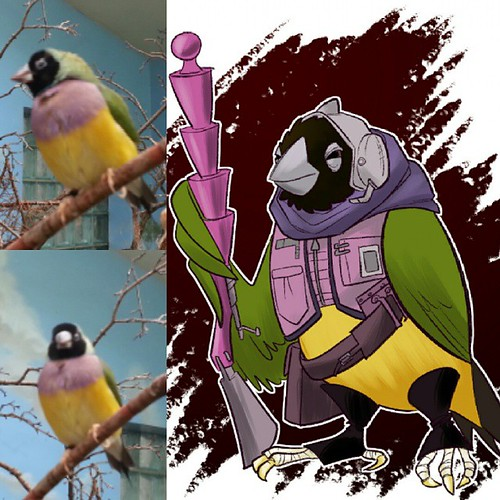 Sketching birds that I saw at the zoo today. #boulderandfleet | by Jerzy Drozd