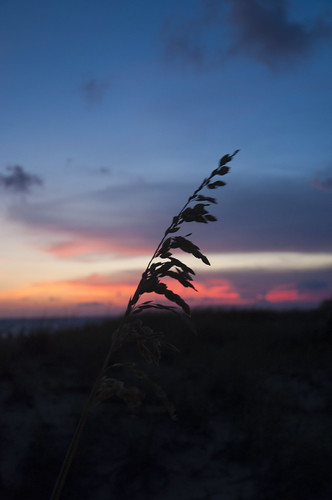 sunset sky usa beach gulfofmexico water nikon wasser unitedstates florida pcb panamacitybeach baycounty emeraldcoast d5000 fisherbray