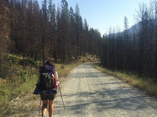 PCT: Day 116