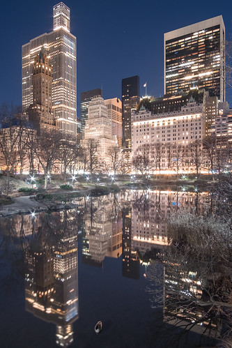 Central Park at Night | by RBudhu