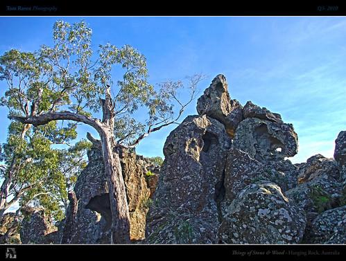 wood sky tree rock stone mystery geotagged rocks australia victoria eucalyptus hdr hangingrock picnicathangingrock fbdg thingsofstoneandwood tomraven updatecollection aravenimage q32010 geo:lat=37327655 geo:lon=144594968