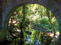 Stanley Park Secret Garden