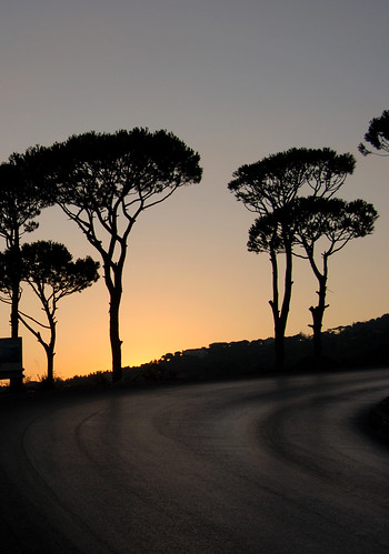road trees sunset mountain silhouette curve