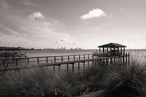 park white black river landscape boat dock florida jacksonville ortega stinson