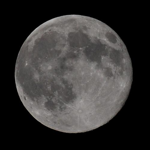 August full moon | by Tanya R.
