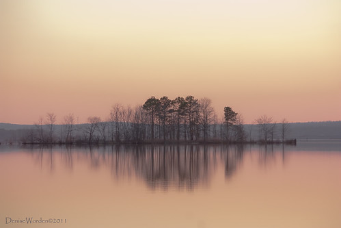 trees light sunset lake water canon island golden nc afternoon northcarolina goldenhour jordanlake 450d