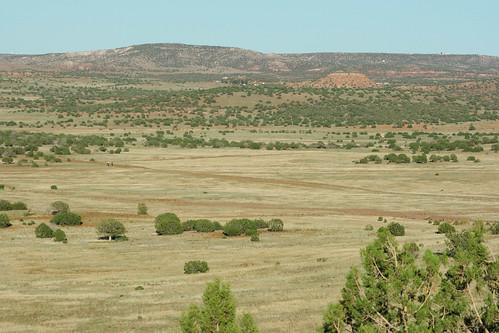 vacation arizona 2010 concho apachecounty