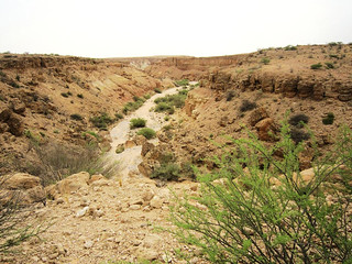9b. Gorges and rough terrain outside Berbera | by Breaking the Cycle
