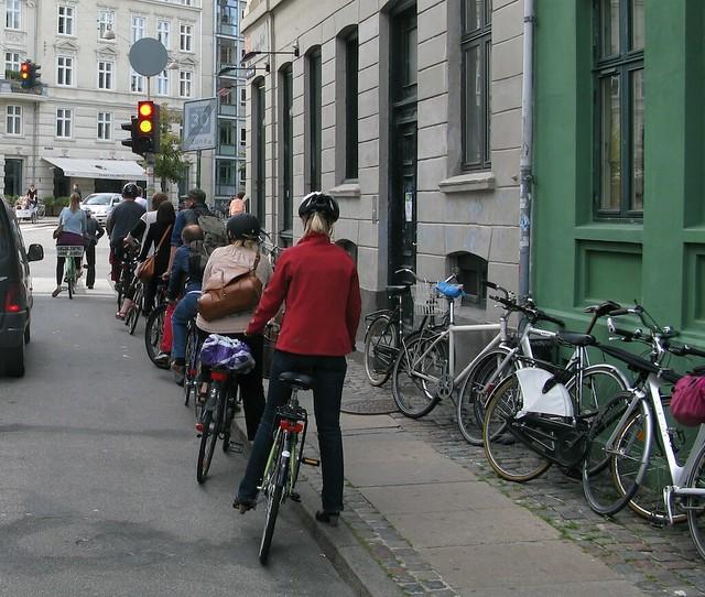 Obedient Bike Traffic