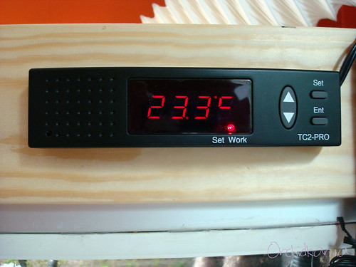 Lucky Reptile Thermo Control Pro II - display | by orchidkarma