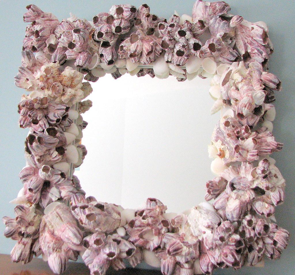 BGC barnacle mirror 2 002 | Seashell Mirror of ocean barnacl… | Flickr