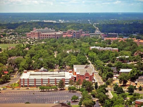 university cityscape florida stadium floridastateuniversity fsu aerialview tallahassee doakcampbellstadium footballstadium