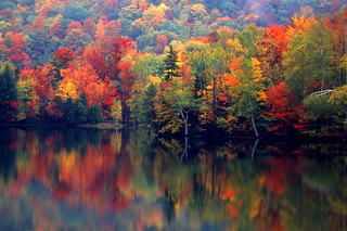 Vermont reflection