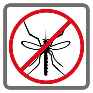 Los mosquitos son portadores de multitudes de virus