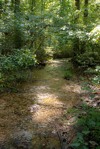 statepark park trees nature water creek outdoors spring stream tennessee redclay shallow bradleycounty