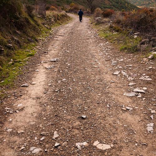 Camino de Santiago   by Carlos.Carreter