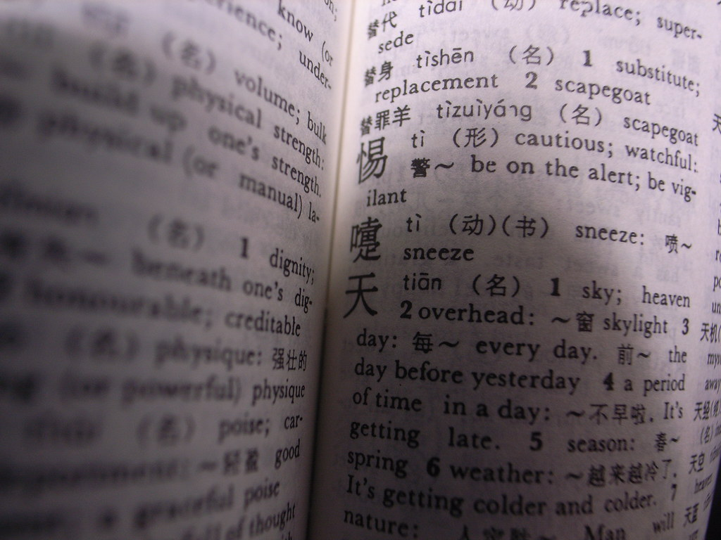 Chinese Dictionary | Toshiyuki IMAI | Flickr