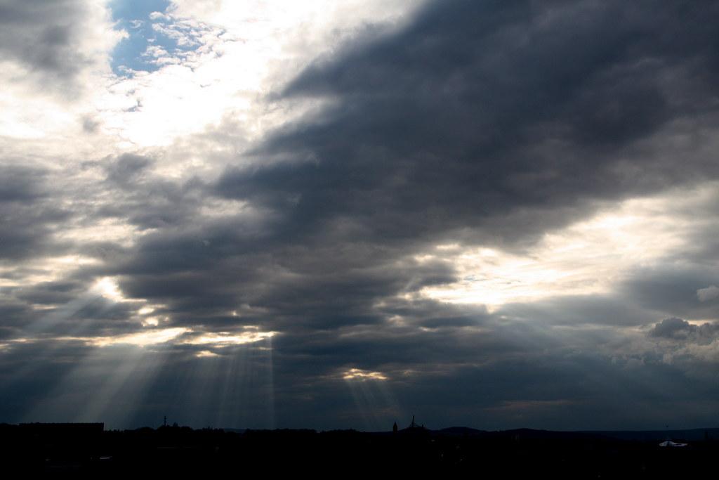 14-11-2010 (318/365) - Rayons de soleil | Un dimanche ensole… | FlickrFlickr
