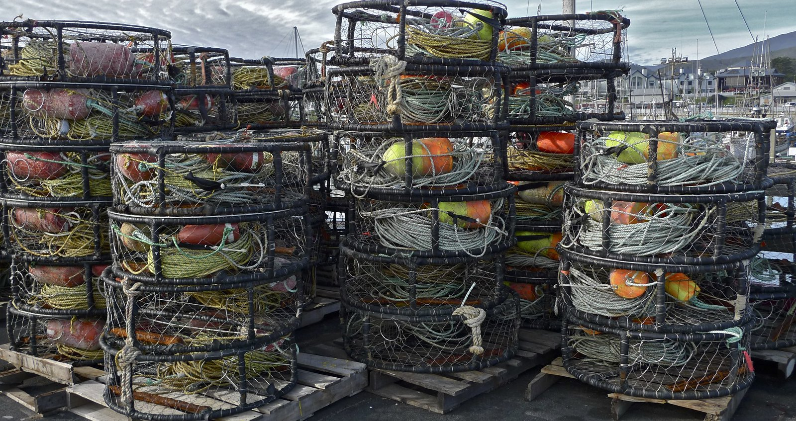 photo of crab pots