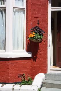 Baskets St Davids Road | by tenantspin
