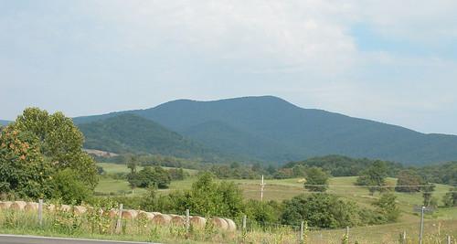 summer mountain landscape virginia hay massiescorner rappahannockcountyva