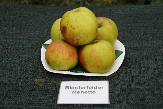 Biesterfelder Renette