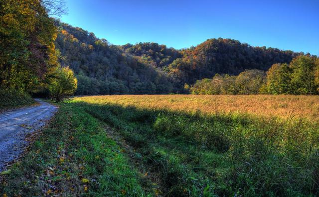 Field, Spring Creek Rd, Jackson Co, TN