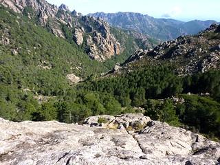 :Remontée finale : l'affluent Castedducciu et vue du Finicione vers l'aval