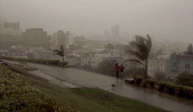 Rain and wind in San Francisco, at Alta Plaza (2010)