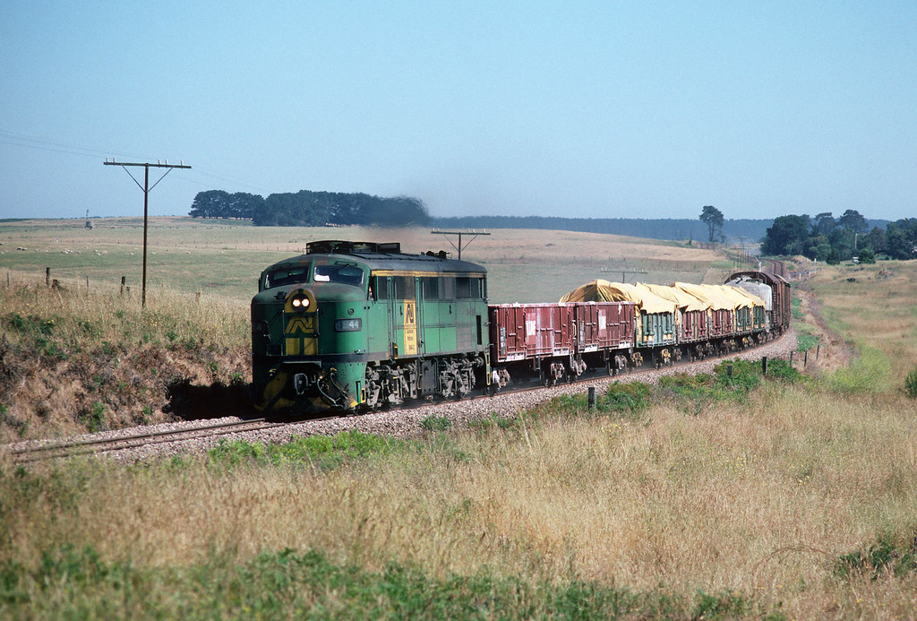 944 down goods near Mt Gambier by Rail Tourist Association