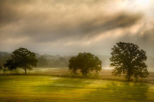 ranch morning trees fall fog sunrise landscape dawn day texas land geotag hdr lightroom realistic troup photomatix tonemapped breakingdawn tthdr detailsenhancer novampireshere regionwide crepuscularshadows ©ianaberle fisherhilltopranch
