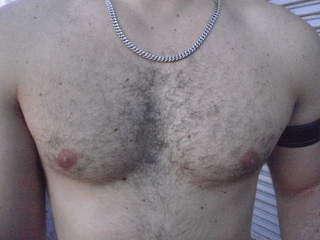 TUDE DUDEs AWESOME HAIRY MUSCLE CHEST ! ~ FOLSOM STREET FAIR 2010 ! ( safe-photo )