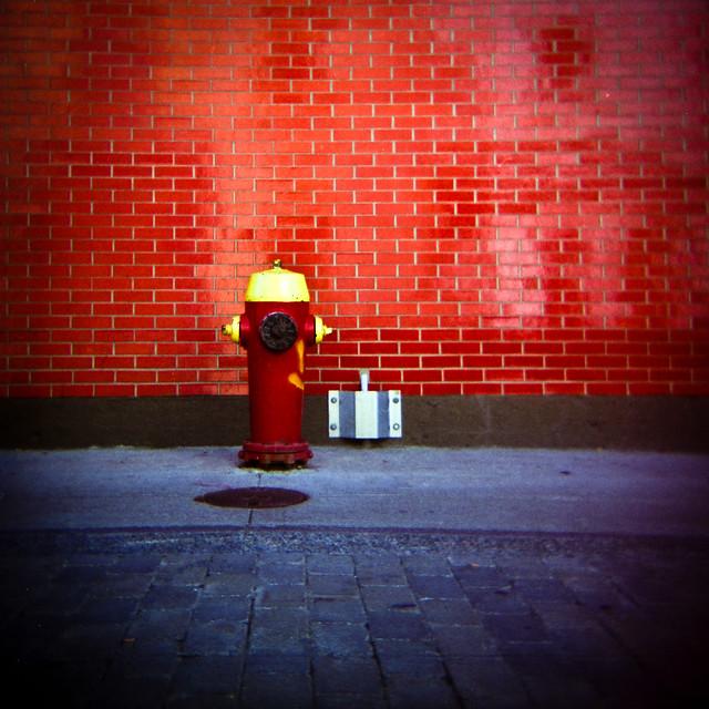 Holga aime le rouge