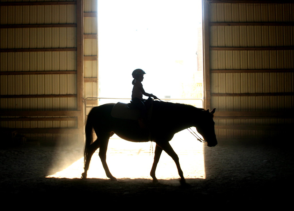 10.9.10 Taking the Reins | (282.365) My Goddaughter's 6th bi… | Flickr