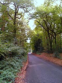 Sergehill Lane, Bedmond | by Wooly Matt