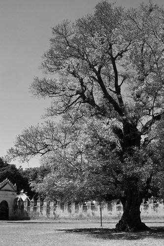 Convento de San Gabriel BN (2010) 08