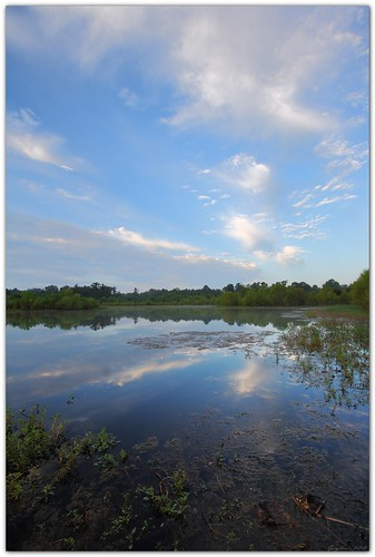 summer reflection nature water clouds landscape pond 10mm canonefs1022mmf3545usm mrgreenjeans gaylon blackwaterconservationarea gaylonkeeling